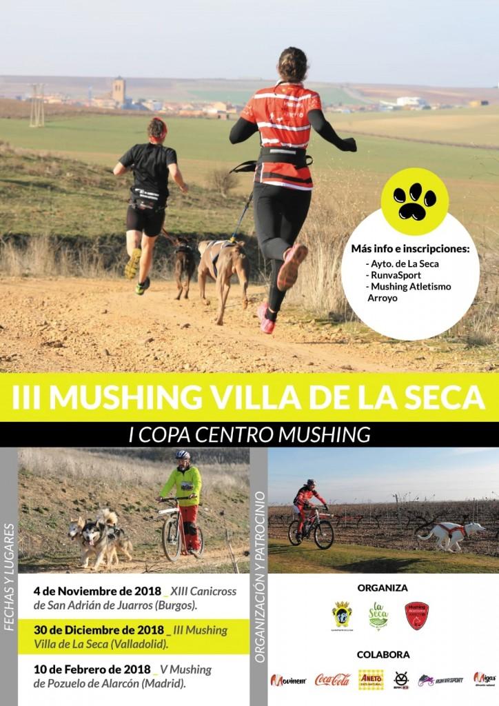 III Mushing Villa de La Seca - Valladolid - 2019