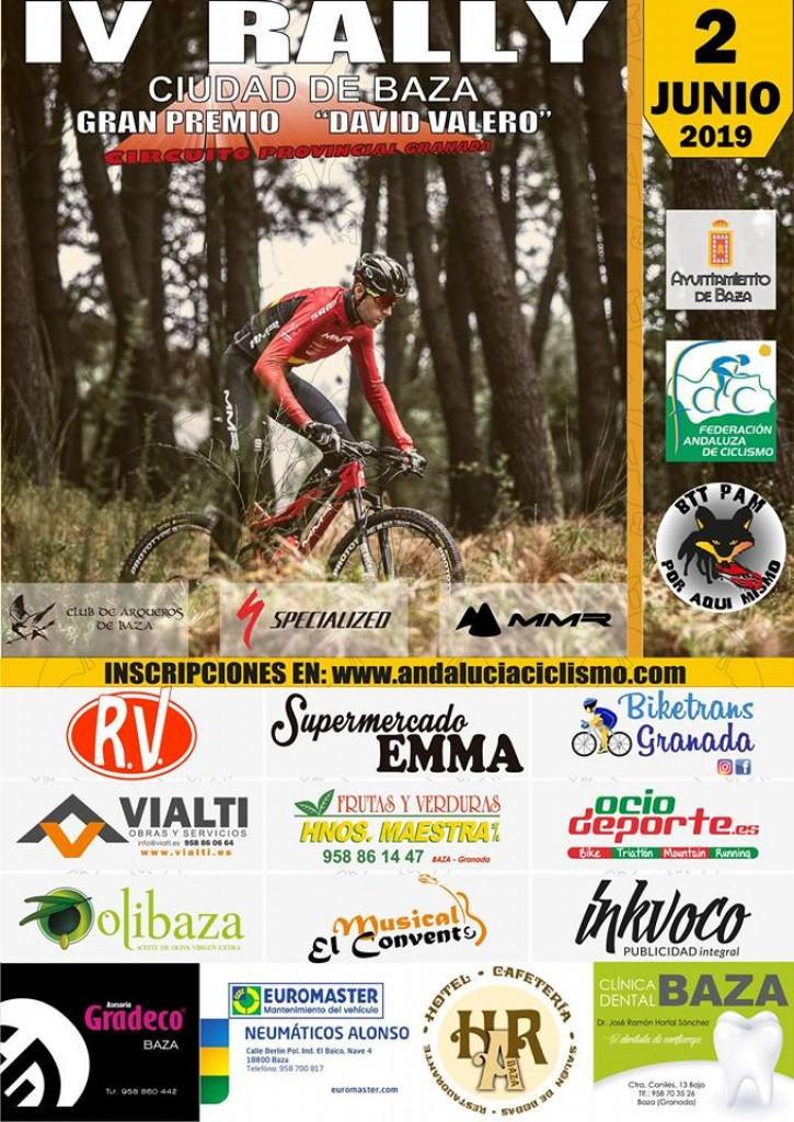 IV Rally Ciudad de Baza GP David Valero - Granada - 2019